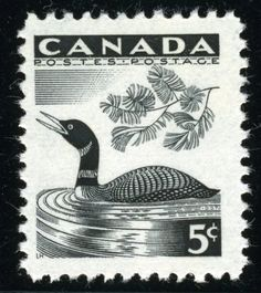 Canada .5¢ Loon stamp, designed by Laurence Hyde. It was issued April 10, 1957, coinciding with National Wildlife Week