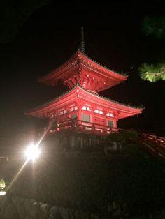 a tower in Daikakuji temple