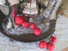Zieräpfel Strauch