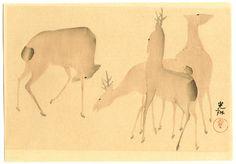 Ogata Korin After Title:Deer and Spring Flowers .