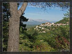 Provence, village de Mimet... http://mistoulinetmistouline.eklablog.com/