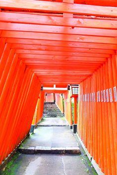 緑と朱色のコントラスが美しい!島根・津和野「太鼓谷稲成神社」 | 島根県 | Travel.jp[たびねす]