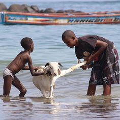 Bath time, Dakar - Senegal