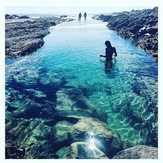 these days are summer days. Yet winter nights. The GC is seriously an all-seasons-in-one-day city... Photo by @clareawatson  Location: Snapper Rock Pool Snapper Rocks is a small rocky outcrop on the northern side of Point Danger at the southern end of Rainbow Bay on the Gold Coast. It is a famous surf break and today a super sweet swimming spot especially around the rocks #goldcoast  #snapper #snapperrocks #queensland  #australia  #holiday  #donut #vegan #clean #destination #vacations  #shop…