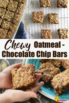 Chewy, Easy Oatmeal Chocolate Chip Bars - a kid-friendly recipe for toddlers and preschoolers to make. All the flavour of a classic oatmeal chocolate chip cookie. Great recipe to make with kids. Perfect for snacks, lunch box or to take on-the-go.