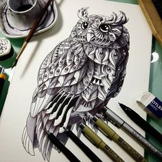 Ornate Illustrations of Animals by Ben Kwok