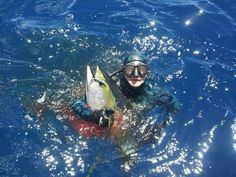 Yellowtail speared off Cape Town http://www.xtremecharters.co.za