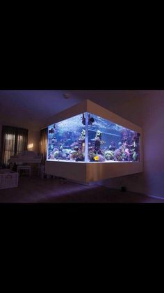 This is simply amazing! Coral Reef Aquarium, Saltwater Aquarium Fish, Saltwater Tank, Marine Aquarium, Planted Aquarium, Freshwater Aquarium, Fish Aquariums, Unique Fish Tanks, Cool Fish Tanks