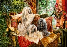 Lha De Dah - Limited Edition Print - Lhasa Apso - by Margaret Sweeney