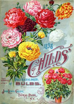 John Lewis Childs - Fall Catalogue of Bulbs (1898) - Seed Catalogs from Smithsonian Institution Libraries