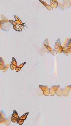 Ed Wallpaper, Iphone Wallpaper Vsco, Cartoon Wallpaper Iphone, Homescreen Wallpaper, Iphone Background Wallpaper, Iphone Wallpaper Tumblr Aesthetic, Aesthetic Pastel Wallpaper, Aesthetic Wallpapers, Butterfly Wallpaper Iphone