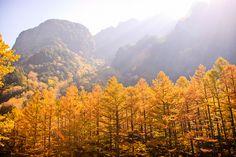 Kamikochi - Japan Alps National Park Resort by Chen Qu, via Flickr