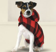 Canine Cool: 13 Warm Outerwear Options For Your Pup via Brit + Co.