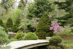 Kesän taikaa: Kasvitieteellinen puutarha Turussa