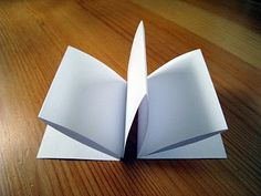 Easy Book Making - accordian fold Decorate by gluing a fun shaped cover to each end (depend on the subject) :)