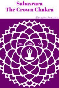 How yoga and meditation balance body chakra. Learn here crown chakra , its color, bija mantra and associated yoga poses. Chakra Meditation, Chakra Healing, Body Chakras, Eagle Pose, Fish Pose, Yoga Courses, Yoga For Back Pain, International Yoga Day, Chakra System