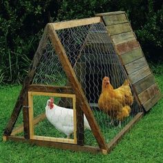 An A-frame coop is one of the simplest to build. After constructing the low-slung, triangular frame, cover one half in wire mesh to make the chicken run, then clad the other half to form the weatherproof shelter.