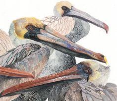 Michelle Morin - Brown Pelicans (fragment)
