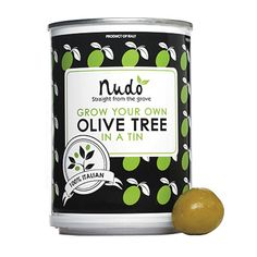 No room for a garden? Grow an olive tree on the windowsill with the Nudo Grow Your Own kit.