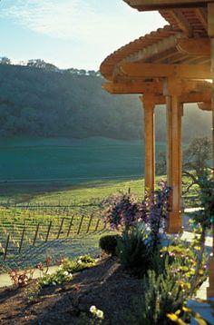 Santa Cruz Mountains vineyard