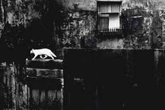 PIERGIORGIO BRANZI (B. 1928)   Parigi, Muro nero con gatto (Paris, black wall with cat), 1954   Photograph