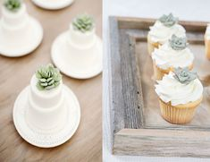 Succulent Wedding Cake Cakes Beautiful Eyes Day Succulents Pretty