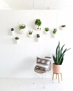 New planters hung in the studio! Turns out I am not great at this holiday weekend thing...thanks Mom and Dad for helping hang and plant these guys  #ispydiystudio