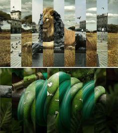 Funny pictures about Collage. Oh, and cool pics about Collage. Also, Collage photos. Photomontage, Man Vs Nature, Human Nature, Nature Collage, A Level Art, Art Plastique, Looks Cool, Photo Manipulation, Art Direction