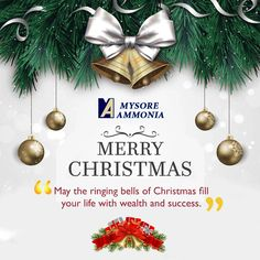 May the ringing bells of Christmas fill your life with wealth and success.  #MerryChristmas #HappyNewYear  Mysoreammonia : http://mysoreammonia.com