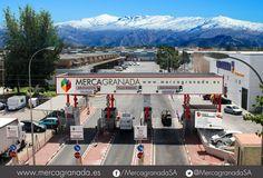 Granada Wholesale Market, Mercagranada, Spain #wholesalemarkets #granada