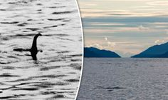 SIGHTINGS of the Loch Ness Monster are at the highest this century after a nine-year-old boy who came to Scotland especially to see Nessie did just that.