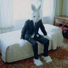 Bizarre Human Bunnies: People Rocking Rabbit Costumes in Public
