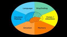 """Passando para compartilhar um estudo recente de John Whalen, um """"psicólogo de UX"""" que possui PhD em ciências cognitivas pela Johns Hopkins…"""