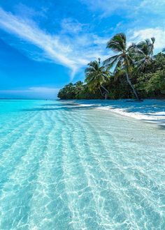 The most detailed travel guide about the Maldives for every budget! Learn everything about the Maldives and plan your the best vacation! Vacation Places, Dream Vacations, Vacation Spots, Vacation Travel, Cruise Vacation, Beach Travel, Travel Goals, Budget Travel, Travel Guide