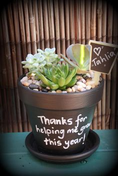 Sweet little succulent perfect for teachers gift                                                                                                                                                     More