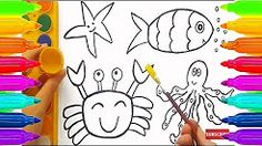 how to draw a fish - YouTube