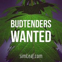 You wanna tend some Buds?