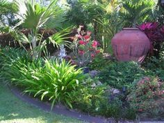 tropical gardens queensland - Recherche Google