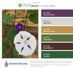I found these colors with ColorSnap® Visualizer for iPhone by Sherwin-Williams: Kimono Violet (SW 6839), Reflection (SW 7661), Different Gold (SW 6396), Houseplant (SW 6727), Rojo Marrón (SW 9182), Espalier (SW 6734).