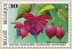 belgian stamps Floraly of Genth IX  Fuchsia hybrida.