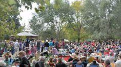 Hubo más de diez mil personas en popular fiesta en Baradero