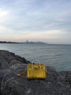 Check out our #Dior reveal photos of the new #Diorever, featuring the city of #Chicago! #purse
