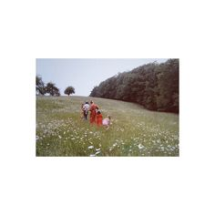 Grave Deer ❤ liked on Polyvore featuring pictures, backgrounds, photos, images and people