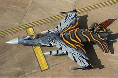 Falcon  https://www.fanprint.com/licenses/air-force-falcons?ref=5750