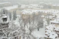 Praha pod sněhem Praha, Snow, Outdoor, Loreto, Outdoors, Outdoor Games, The Great Outdoors, Eyes, Let It Snow