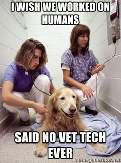 Happy Vet Tech - i wish we worked on humans said no vet tech ( or veterinarian) ever