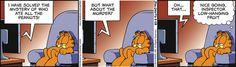 Garfield Comic Strip May 28 2015 on GoComics.com
