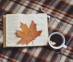 Bom dia :) .  Credits to @matveeva_vesna .  #book #reading #ilovebooks #bookworm #bookstagram #reader #booklover #книголюб #vscobook #bookaholic #instabook #autumn