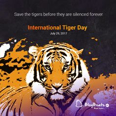 Save The Tiger, Special Events, Festivals, Animals, Animales, Animaux, Animal, Animais