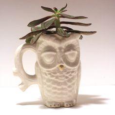 Handmade Ceramic Owl Mug/Planter
